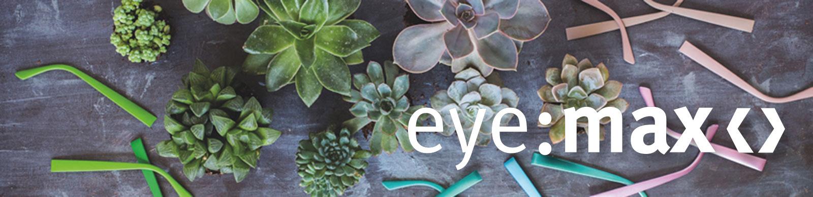 Eyemax Wechselbügel