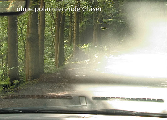 optik-gerigk-polarisierende Brillengläser